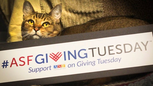 Help ASF help area animals in need on Giving Tuesday.