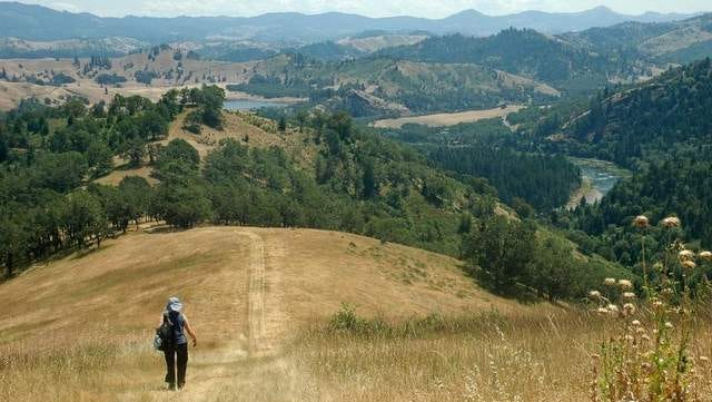 A hiker enjoys a view of the North Umpqua River winding through the valley from the North Bank Habitat.
