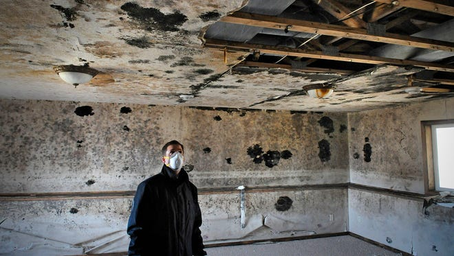 Stearns County Division Director of Land Management Chad Martini views a portion of a tax-forfeited house in Sartell that has become filled with mold.