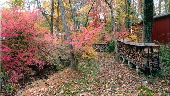 """James Millar of Hanover submitted this photo titled """"Getting Ready for Winter."""""""