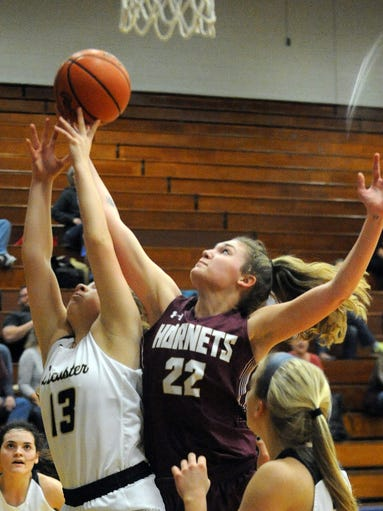 Lancaster's Abigail Wilfing and Licking Heights' Isabella