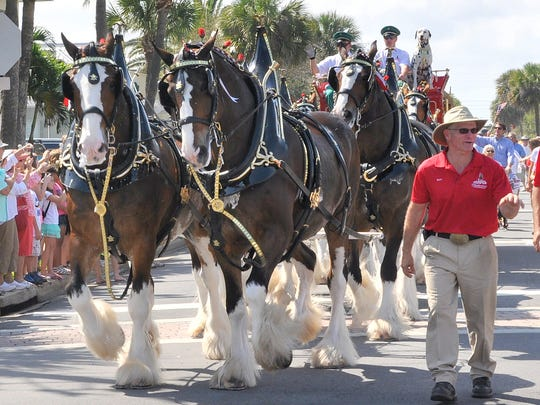 """Those """"ambassadors of excellence,"""" the Budweiser Clydesdales will be coming to downtown Fort Pierce and to Vero Beach this weekend."""