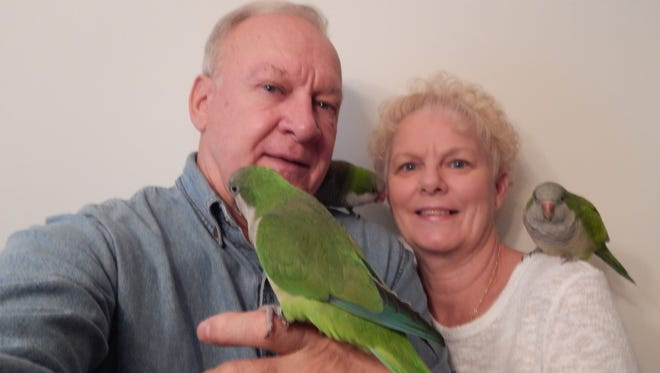 Jim and Cindy Tome pose with their Quaker parrots - Baby Bird, JuJu-B and Jakey - in their North Carolina home. They moved to North Carolina so they could keep their birds, which are illegal to possess in Pennsylvania.