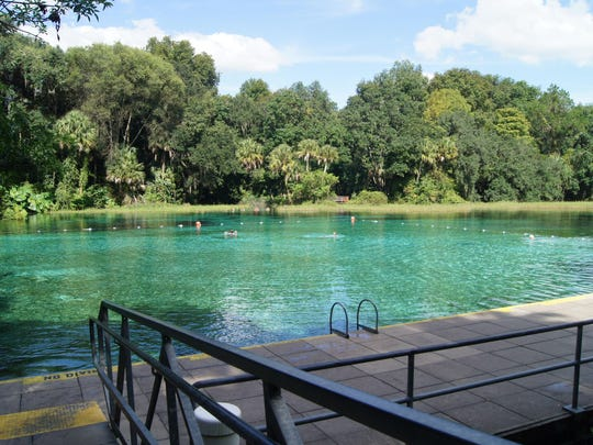 """Rainbow Springs State Park, located southwest of Ocala near Dunnellon, is home to the headspring of the Rainbow River creating a """"natural"""" swimming pool with a white sand and limestone bottom."""