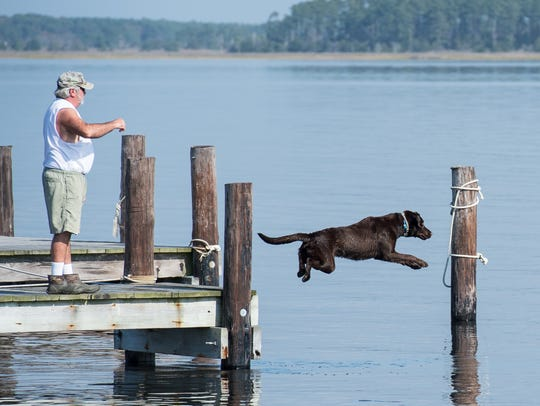 Bruce Emely plays fetch with his dog Gus at a dock