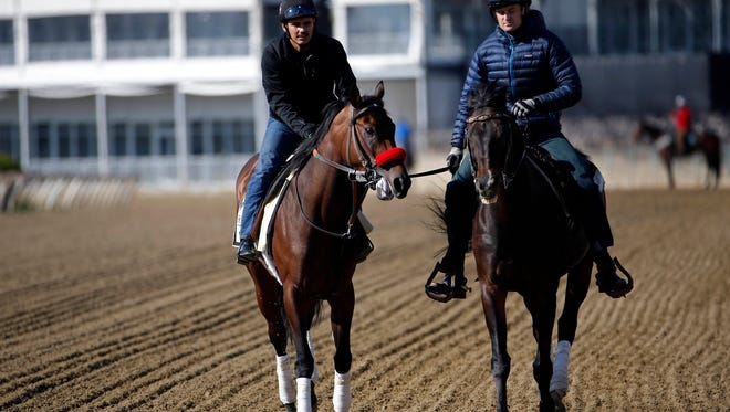 May 16, 2016; Baltimore, MD, USA; Kentucky Derby winner Nyquist (L) walks on the track during a training session for the 141st Preakness Stakes at Pimlico Race Course. Mandatory Credit: Geoff Burke-USA TODAY Sports