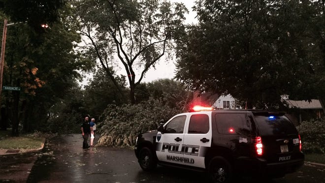 A tree is downed Friday on Sixth Street in Marshfield after severe weather rolled through the area.
