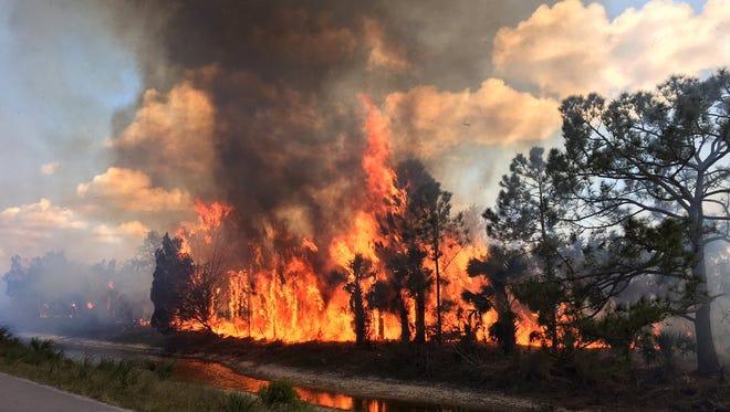 Firefighters were handling a blaze at the Merritt Island National Wildlife Refuge Friday.