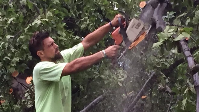 City of York Parks employee Chris Maldonado uses a chain saw to cut a fallen limb at Penn Park, where numerous trees, power lines and utility poles were damaged by Tuesday's storm.