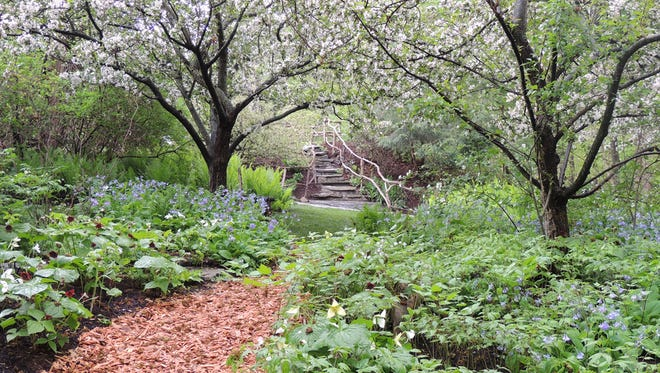 Broccoli Hall, the garden of Maxine Paetro in Amenia, is one of the private gardens that will be open to the public during the Garden Conservancy's Open Days program this season.