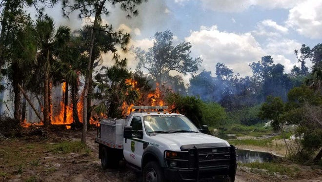 High winds and lower humidity caused the Bluefield Preserve Wildfire to breach its containment lines. Firefighters on the scene were able to quickly suppress it.