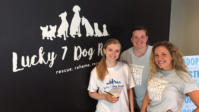 From left, Lucky 7 Dog Rescue volunteers Audrey Thomas, Erin Orosco and founder Maddy Vasseau pose in the organization's new space on North Broadway.