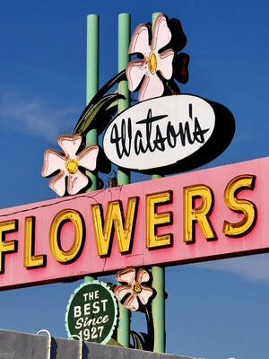 One of the only remaining neon signs on Apache Boulevard, the Watson Flower's sign collapsed against the building in 2015. Now stored on a pallet in the parking lot, its future is uncertain given the high cost or repair and reinstallation.