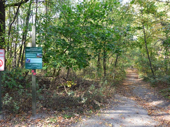 At the first intersection on the trail, take a right.