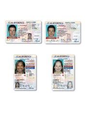 """These sample images compare the appearance of driver's licenses issued under AB 60 (left) with regular licenses (right). AB 60 licenses are marked with the phrase, """"federal limitations apply."""""""