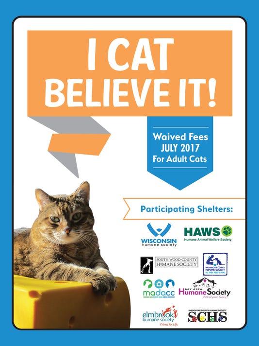 636344713775658015-cat-adoption.jpg