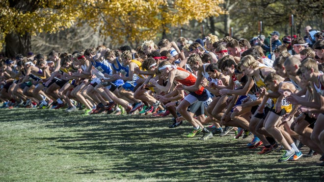The line explodes with the sound of the starting gun last season at the Class 2A cross country state finals at Detweiller Park in Peoria.