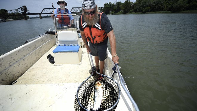 Program coordinator of Veterans for Clean Water Truck Carlson, right, hauls in a dead fish as Dale Reddick, with the Savannah Riverkeeper, pilots the boat on the Savannah River in Augusta, Ga., Friday afternoon June 26, 2020.