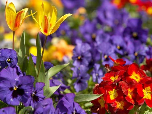 Garden briefs stock photo