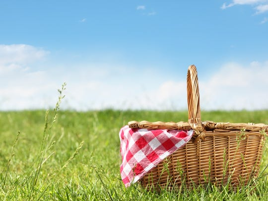 Bring a lunch and listen to the Wausau Symphony at this year's Picnic at the Pavilion