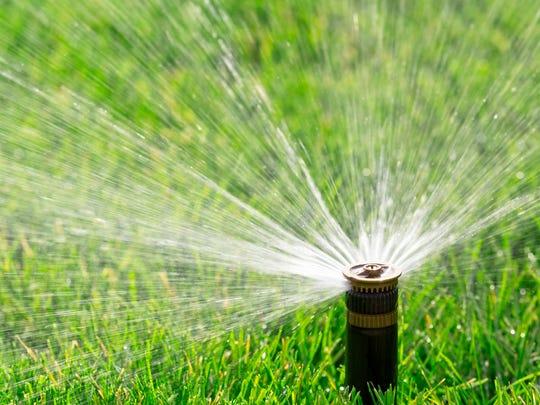 Automatic sprinkler watering fresh lawn.