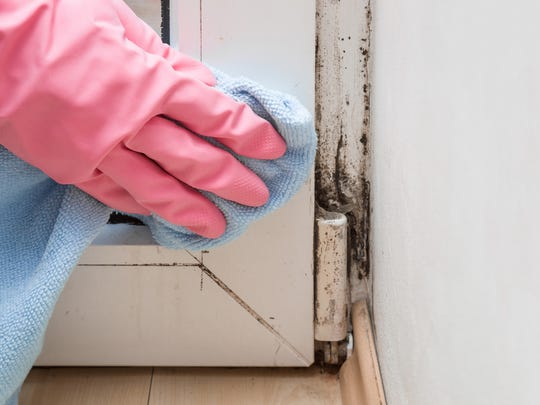 Use your spring cleaning routine to find leaks around your home and seal them up.