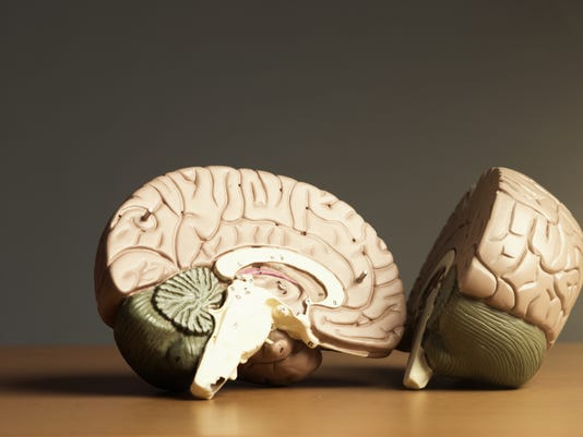 Two halves of a brain