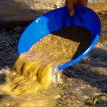 A prospector sifts for gold in the Bear River near Colfax, Calif., on Jan. 26, 2014.