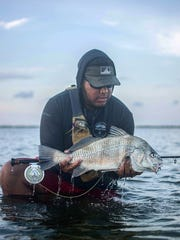 Hungry tailing black drum #vivacc #sealevel
