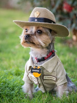 Dogs can become Bark Rangers  at a free event with treats early Saturday for  dogs and their handlers at National Park Service in Philadelphia