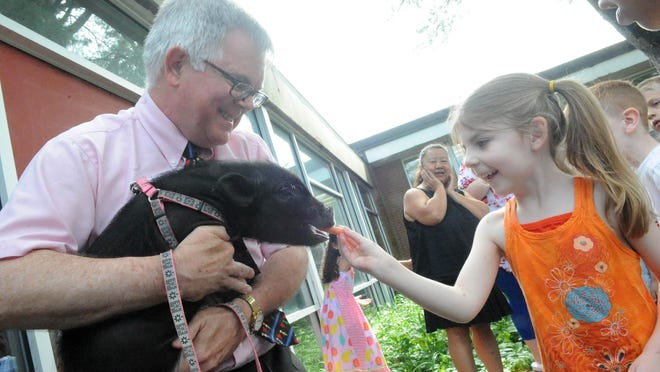 Student Lucy Homer, 5, feeds a carrot to Maizy the pig as Brian Rogan, the principal  of the Kennedy School, kissed the 5-month-old teacup pig on Tuesday, June 20, 2017, as part of his bargain if the kids raised $20,000 in their fun run.