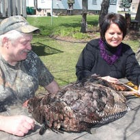 Tom and Julie Bergholz of Marshall measure a wild turkey. The couple have run a Learn to Hunt Turkey program and Youth Hunt since 2000