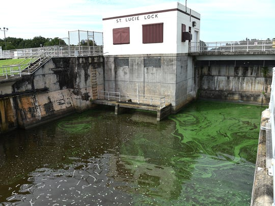 Algae and water condition on the downstream side of the St. Lucie Lock and Dam along the C-44 canal on Monday, July 9, 2018, in Martin County. The Army Corps of Engineers suspended discharges of Lake Okeechobee algae-filled water again late Sunday, July 8, 2018.