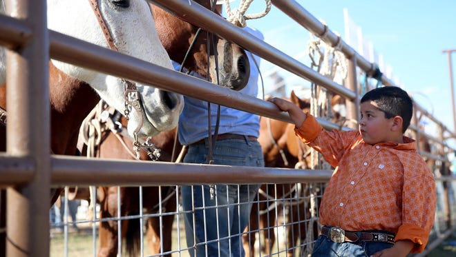 Kaleb Calvery, 5, looks at the horses lined up for the 63rd Annual Cinch Roping Fiesta on Saturday (Adam Sauceda/Standard-Times).