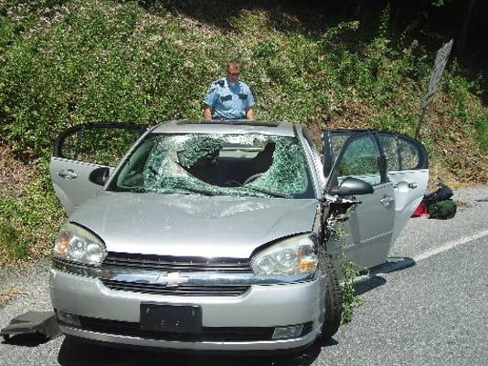 Deer/car crash