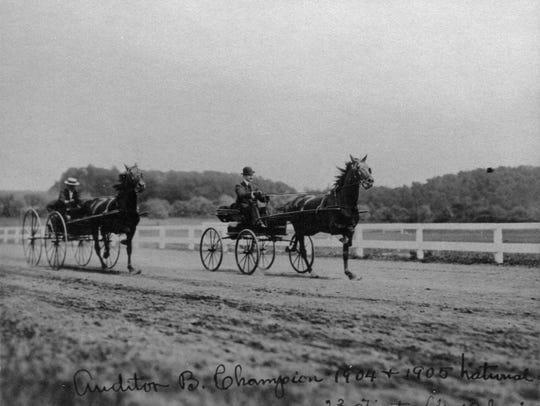 Horse training at Killearn Farm in Millbrook, New York.