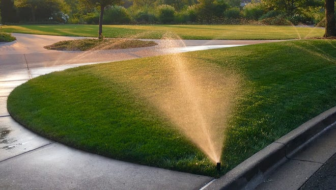 Automatic irrigation systems, when managed properly, can be your best friend during dry periods.