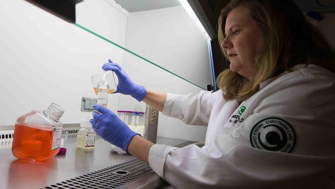Dr. Jennifer Sims-Mourtada, who heads breast cancer research at the Center for Translational Cancer Research, works on a media used to grow blood cells that will test interactions between immune cells and cancer cells.
