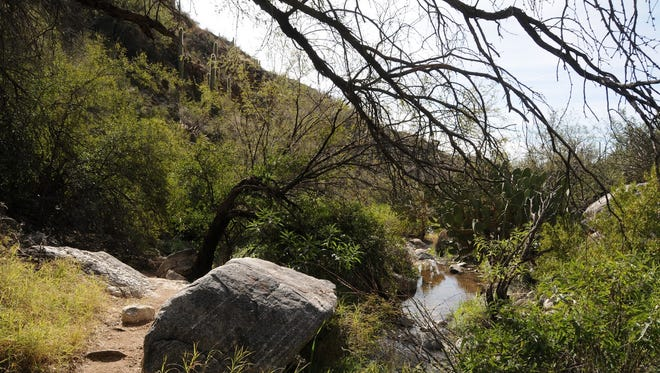 There's seasonal water along the trail.