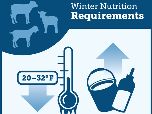 636467691707409469-MPL-Winter-Mgmt-Tip-Infographic-FINAL-110917.png