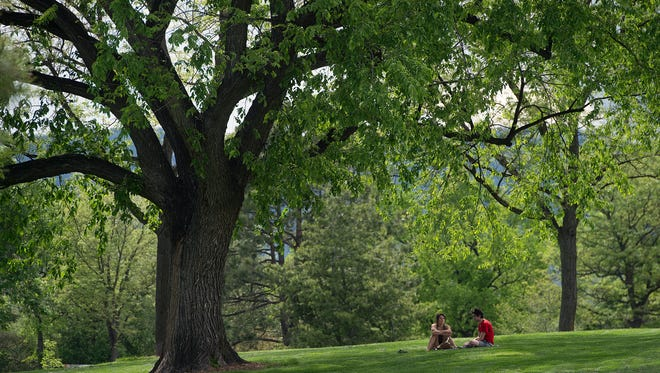 Elizabeth Claire Grubb and Riley Ross are surrounded by green as they have a picnic in the shade of a large tree in City Park on Wednesday, May 30, 2018.