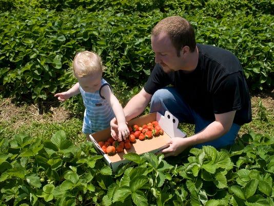 -farm 05.jpg_20090612.jpg