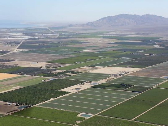 Farmland dominates the landscape in the eastern Coachella