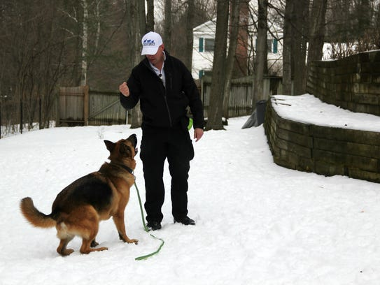 Dog trainer and former police officer Thomas Radford, owner of Thin Blue Line K-9, trains with Sherlock, a 4-year old German Shepherd from South Burlington on Sunday, Jan. 21, 2018.