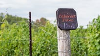 A portion of the Garden State has a new designation, pointing to the growing sophistication of New Jersey winemaking