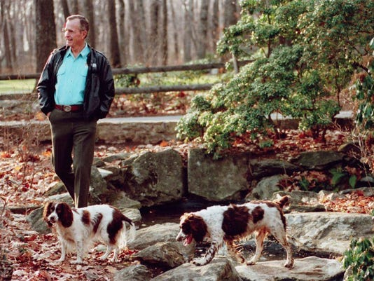 GHWBush-and-Dogs.PETS