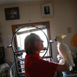 Dianna Larson talks with Conan while taking care of the birds at her home.