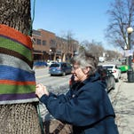 11Wendy Ford removes a colorful tree hugger sweater in Iowa City. The sweaters were taken down Sunday during an event marking the end of the second annual Tree Huggers project.