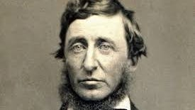 Henry David Thoreau Foundation recently announced applications for its environmental leadership scholarships are now open.