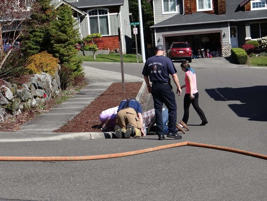 firefighters rescue Hazelwood firefighters came to the rescue of a poor pup who got trapped in a  sewer monday around 2 pm, the fire truck crew answered the.